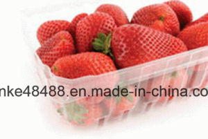 Transparent APET Film, Clear Rigid Pet Film for Food Container Tray Blister Packaging pictures & photos
