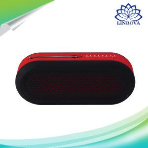 Ds-7620 Wireless Loudspeaker Portable Mini Audio Bluetooth Speaker pictures & photos