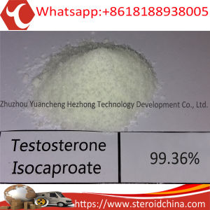 Muscle Man Favoured Hot Steroid Powder Testosterone Isocaproate CAS 15262-86-9 pictures & photos