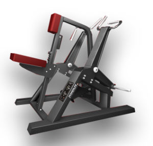 Commercial Fitness Equipment Incline Level Row (SM06) pictures & photos