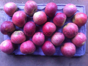 New Crop Fresh Apple/ Chines Fruits of High Quality pictures & photos