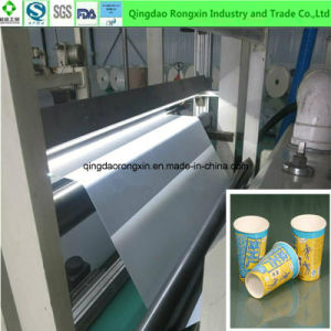PE Coated Paper for Cold Drinking Cup pictures & photos