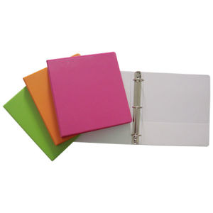 Colorful PP 3 Ring Binder (B3903) pictures & photos