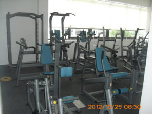Pin Loaded Sports Machine / Seated Biceps Curl (SS10) pictures & photos