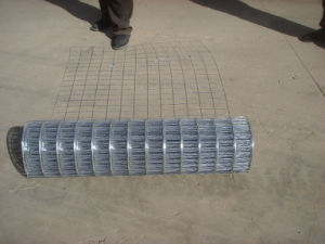Wire Mesh Inspection Service