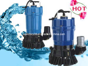 Aluminium Body Garden Water Pump (HS2.4S) pictures & photos