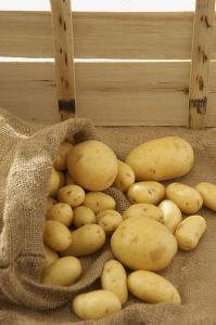Yellow Small Potato