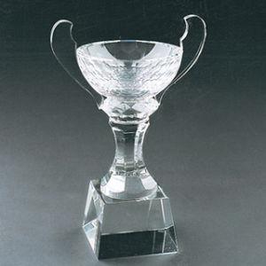 Crystal Award & Crystal Trophy (JL3047)