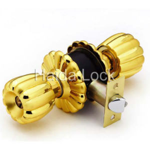Door Lock (HD004)