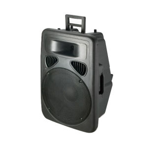 15′′ 2way Plastic DJ Speaker Box with USB SD FM Blue Tooth (PS-1015BT) pictures & photos