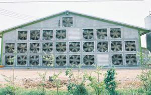 Poultry Equipment Poultry Farm Exhaust Fan (JF-71) / Ventilation Fans pictures & photos