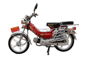 Moped Motorcycle (FHL48Q)