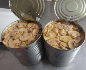 Canned Mushroom (2012 new crop mushroom material)