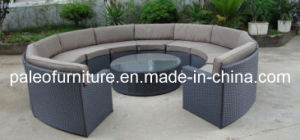 Garden Patio Wicker Rattan Outdoor Furniture (PAS-099)