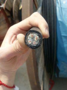 Cable triphasé 10mm2