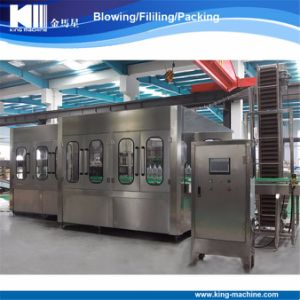 Automatic Bottle Filling Machinery Production Line pictures & photos
