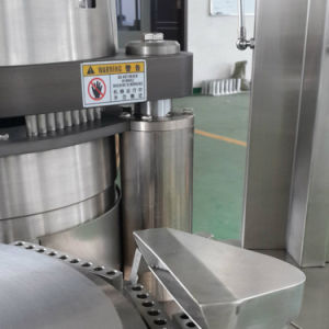 Njp-1200d Fully Automatic Capsule Filling Machinery for Hard Empty Capsules pictures & photos