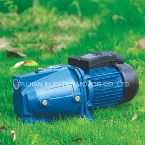 Single Phase Water Pump 220V Qb60 Pump pictures & photos