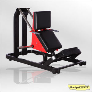 Gym Equipment Commercial Fitness Machine Seat Leg Curl/Plate Loaded Equipment Hammer Type 45 Degree Exercise Weight Free Machine Bft-1009 pictures & photos