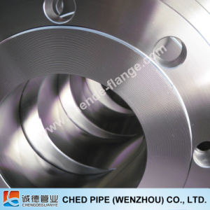 Stainless Steel 304/316L/904L ASTM A182 Nonstandard Flange