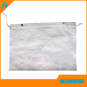 PP Woven Shopping Bag with Handle pictures & photos