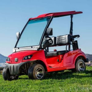 EEC Approved 2 Person Low Speed Road Legal Electric Car (DG-LSV2) pictures & photos