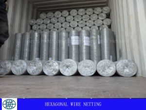 Hexagonal Wire Mesh with Width 30cm to 200cm pictures & photos