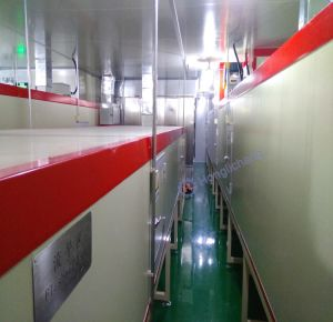 Turnkey Project of Robot Automatic Color Exchanging Coating Line for Helmet pictures & photos