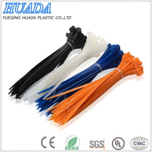 Cable Tie, Strap, Zip Tie, Self-Locking Plastic Tie/Nylon Cable Tie pictures & photos