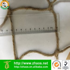 100% Natural Biodegradable Plant Support Jute Net pictures & photos
