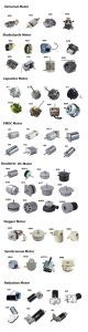 Factory Ce RoHS 110V 220V 90W Induction Motor pictures & photos