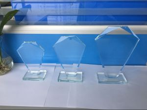 Fwgt-02 High Quality Clear Glass Craft Trophy pictures & photos