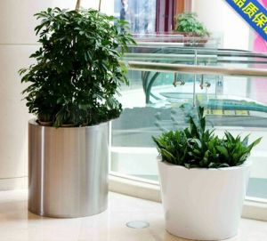 Stainless Steel Flower Planters for Hotel and Apartment pictures & photos
