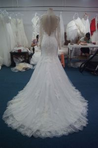 New Duchess Bridal Wedding Gown with Chanpel Train pictures & photos
