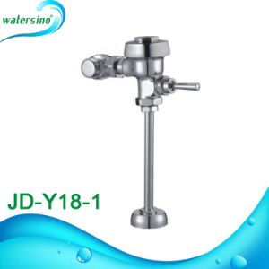 Guangdong Factory Urinal Flush Valve with Button pictures & photos
