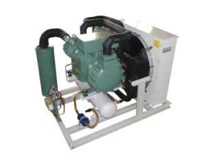 Make to Order Condensing Unit pictures & photos
