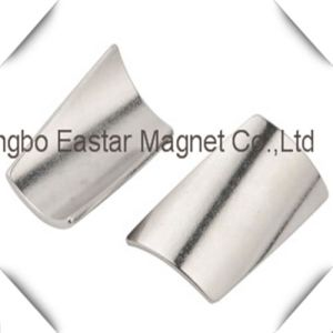 N50 Permanent Neodymium Special Shape Magnet pictures & photos