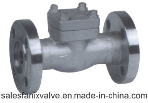 American Standard Forged Flange Check Valve pictures & photos