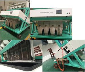 Hongshi CCD Rice Color Sorter Machine Professional on Stick Rice Sorting pictures & photos