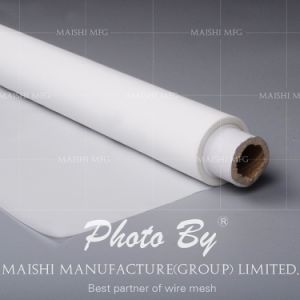 PA6/PA66/ Nylon Filter Mesh pictures & photos