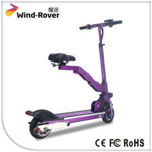 Wind Rover Folding Dirt Bike Cheap Electric Bike with Two Seat pictures & photos