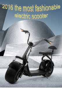2016 The Most Fashionable 2 Wheel Electric Scooter, Adult Electric Motorcycle pictures & photos