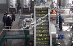 Automatic 2t/H Fruit Juice Production Line pictures & photos