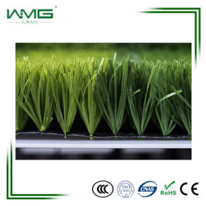 50mm Anti-UV PP Football Field Artificial Grass pictures & photos
