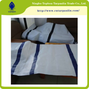 Hot Selling Leno Transparent PE Tarpaulin Tb011 pictures & photos