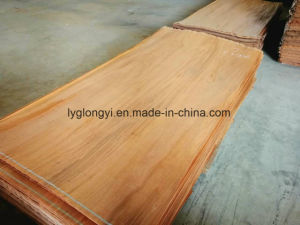 Gurjan Veneer for Plywood Core pictures & photos