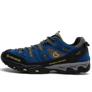 2017 Latest Hiking Shoes, Sport Shoes with Style No.: Hiking Shoes-Xg001 pictures & photos