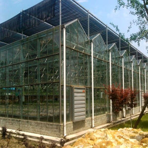 Commercial Multi-Span Long Lifetime Glass Greenhouse for Flowers pictures & photos