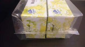 LDPE Transparent Plastic Bag / Clear Plastic Bag pictures & photos