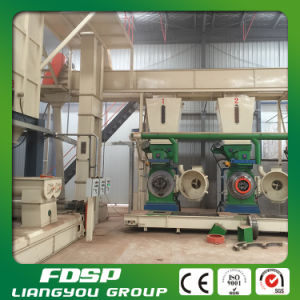Best Selling 5-6 Tons Per Hour Biomass Fuel Making Line pictures & photos